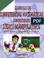 desarrollo competencias matemáticas