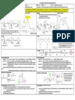 SN2-SN1.pdf