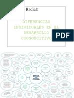 Diagrama Diferencias Intelectuales Del Desarrollo