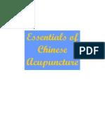 5516727 Essentials of Chinese Acupuncture[1]