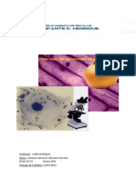 Observação de células da epiderme de bolbo de allium cepa