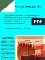 Clase 9 Aparato Digestivo