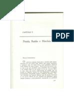 Praxis, Razão e História.pdf