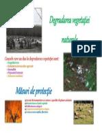 Degradarea vegetaţiei naturale