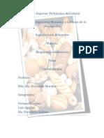 Carbohidratos-Ingenieria de Alimentos
