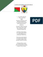 Himnos y Banderas de Santo Domingo de Los Tsachilas