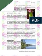 60131449 Areas Protegidas Del SINANPE