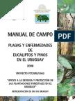 FaoManualde Campo Plagas Eucaliptus y Pinus Uruguay.