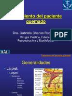 tratamientodelpacientequemad0.pdf