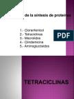 TETRACICLINAS.pptx