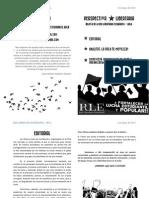 PERSPECTIVALIBERTARIA-MAYO2013-IMPRESIÓN