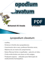 Apresentacao Lycopodium Final