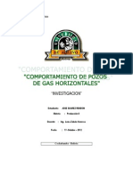 COMPORTAMIENTO DE POZOS DE PETRÓLEO HORIZONTALES INFORME