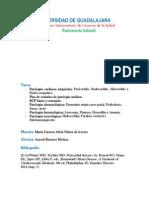 Plan Patologias Cardiacas