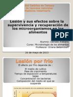 Mo Lesionados y Su Recuperacion