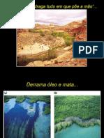 Água e poluição hídrica