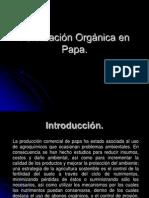 Fertilizacion Organica en Papa