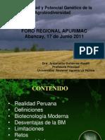 Presentacion en Abancay - Antonieta