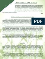 GRANDES MENSAJES DE LAS PLANTAS.pdf