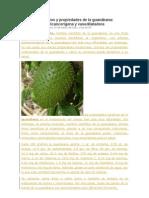 Beneficios y propiedades de la guanábana