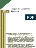 Etapas Del Desarrollo Humanoeric