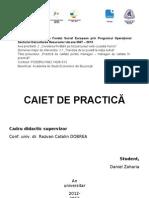 Caiet Practica 2013
