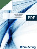 NeuString Service Description - Profit Optimization Workshop - Roaming Wholesale