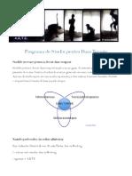 AWerberg_DansTerapie_Programa_LbRomana_Feb2013.pdf