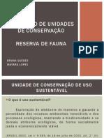 SEMIN+üRIO DE UNIDADES DE CONSERVA+ç+âO