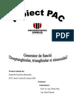 Proiect Pac-Dulamita Cosmina