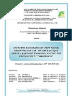 SOUID_WAFA.pdf