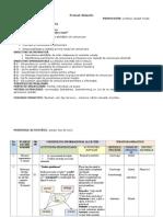 0_proiect_lectie_deschisa.doc