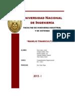 COMPETENCIA MANEJO TRANSCULTURAL