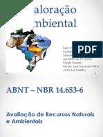 Valoração ambiental.pptx