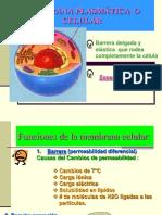 clase 2  MEMBRANA PLASMÁTICA  O CELULAR