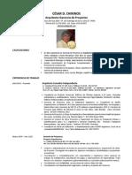 CV-SPANISH 2013