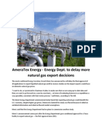 AmeraTex Energy - Energy Dept. to Delay More Natural Gas Export Decisions