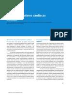 Prótesis valvulares cardíacas