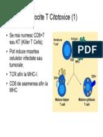 79664150 Imunologie Suport Curs Draft v 0 4 32