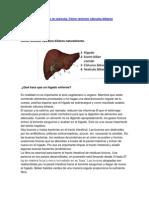 Limpieza del Hígado y la vesícula