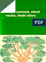 1. Slav-â comun-â, slav-â veche, limbi