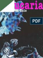 Revista Araucaria de Chile Nº  9