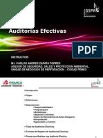 Auditorias Efectivas 2011