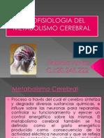 Metabolismo Cerebral
