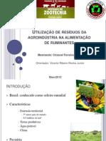 Utilização de resíduos  da fruticultura e agroindústria Final.ppt