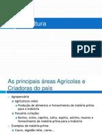 1ª Série EM - Agricultura