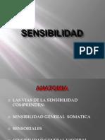 Sensibilidad[1]