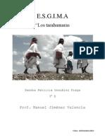 Tarahumara s