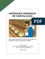 Produção orgânica de hortaliças