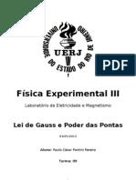 Relatório de Física III - Lei de Gauss e Poder das Pontas